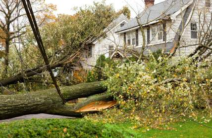 Storm damage restoration in Saint Johns by DRT Restoration, LLC