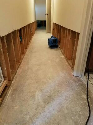 Water Damage Restoration in Saint Augustine, FL (5)